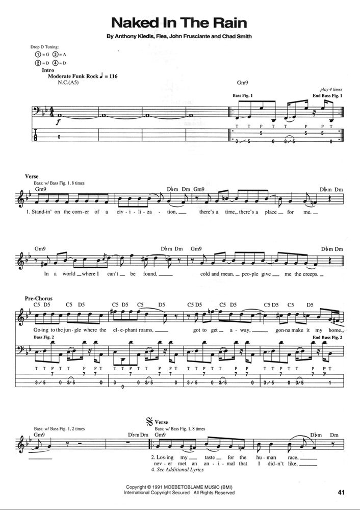 Red Hot Chili Peppers Blood Sugar Sex Magik Bass Transcriptions
